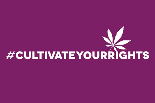 cultivate-yourrights-Blog